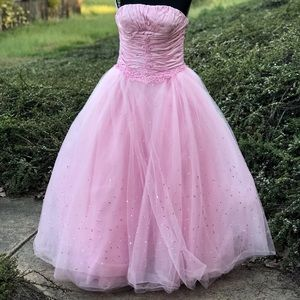 PC Mary Swt 16 Quincenera Pink Dress Size 14
